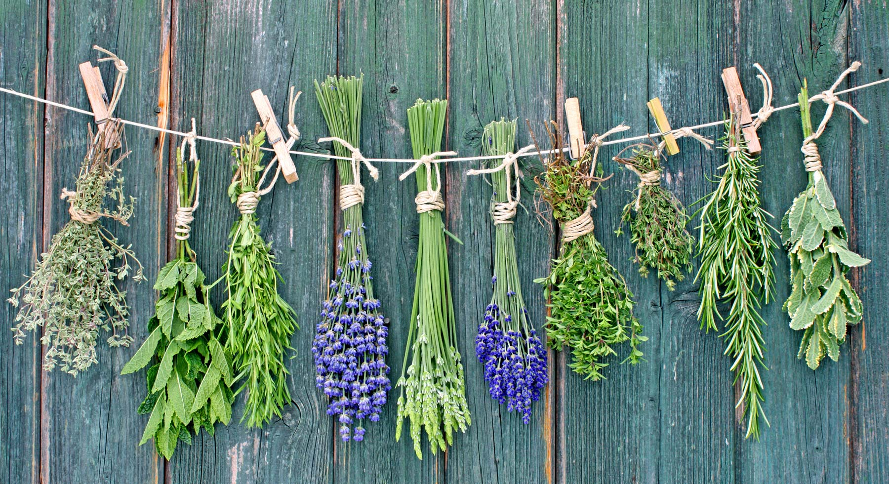 storing produce hanging herbs