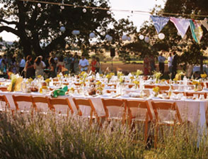 host your own party on the farm